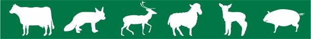 Simboli za živali 6B