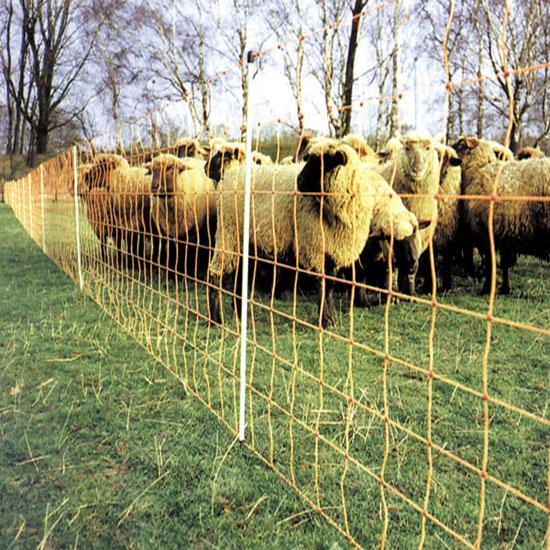 Mreža za ovce